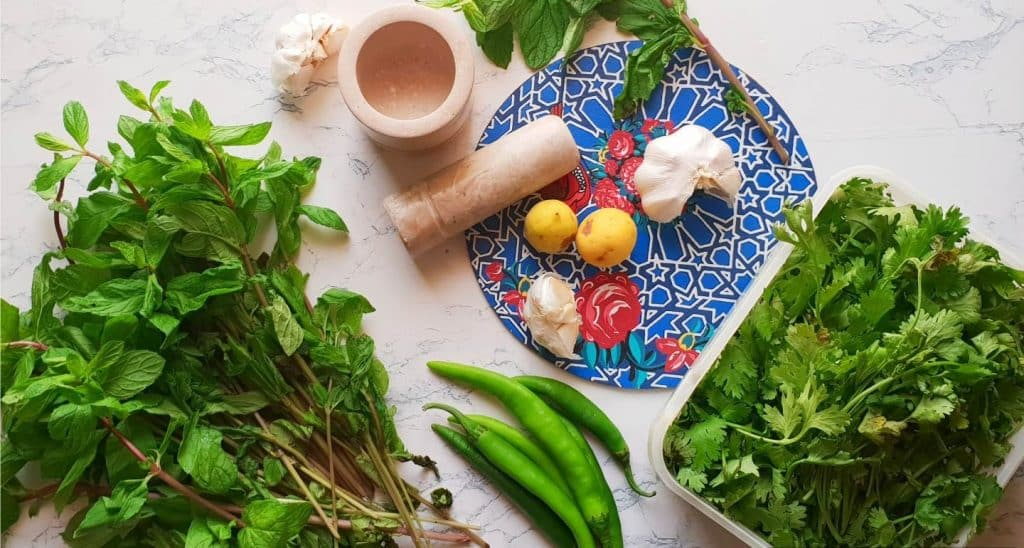 6 green chilies 1 bunch mint leaves plucked from stem and washed 1 bunch coriander leaves washed 6 cloves garlic 1/2 tsp salt 1 tbsp olive oil 1 tsp vinegar Juice of 2 lemons 1/4 cup water