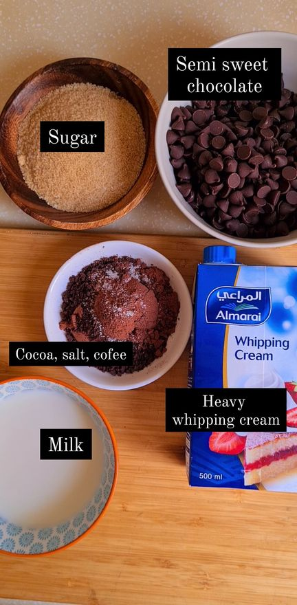 ingredients for chocolate ice cream